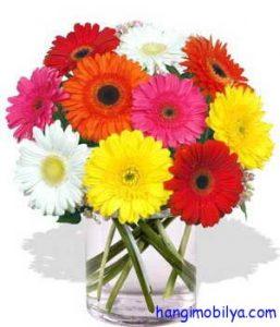 Evinizdeki çiçeklerin ömrünü uzatmak için altın kurallar