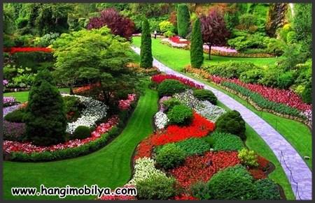 Bahçe Dekorasyon